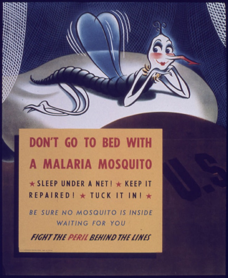 US Army vintage educational poster on malaria risk
